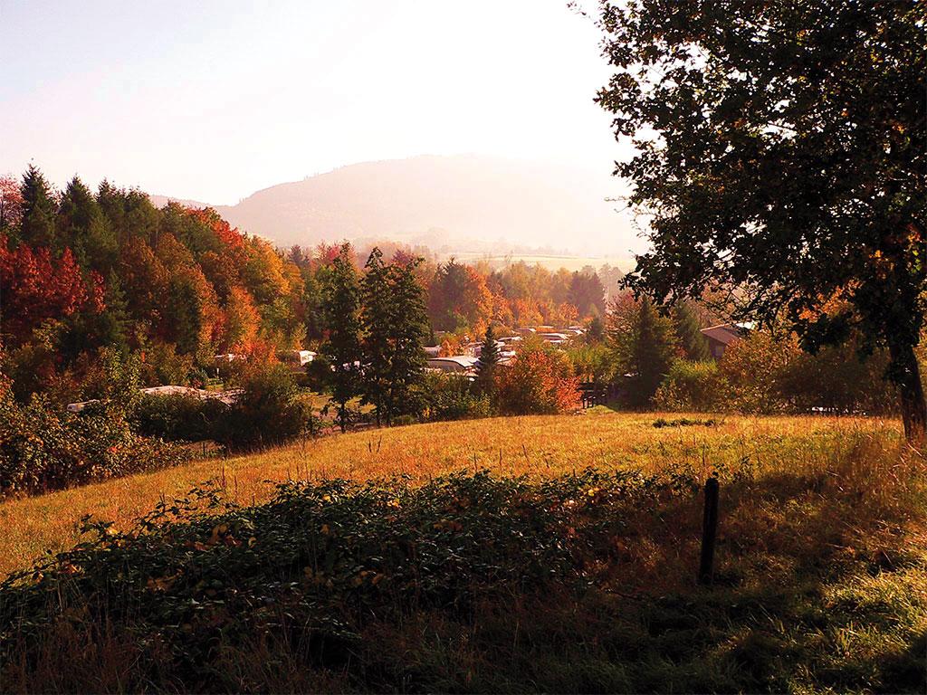 tolles-Herbst-Bild